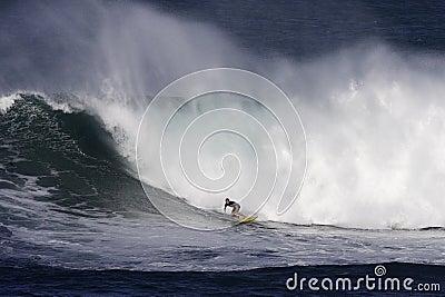 Waimea Bay Surfer