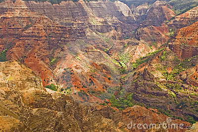 Waimea Canyon details Kauai Hawaii