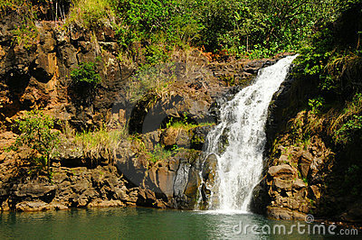 Waimea Valley Waterfall, Oahu Hawaii