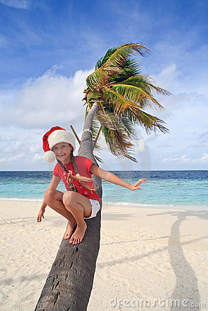 Waiting for Santa on a palm tree