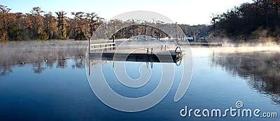 Wakulla Springs Swimming Area