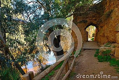 Walk along the Tinto river