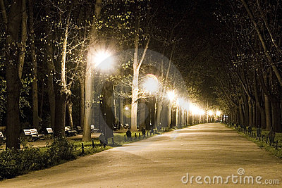Walk in park at night
