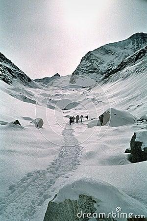 Walk through Swiss Alps