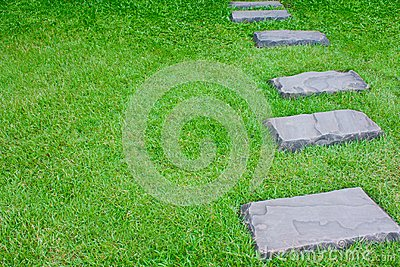 Walk way on Grass-1