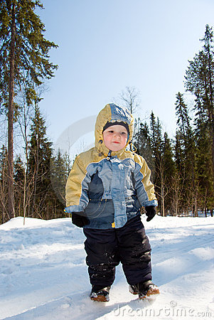 Walk in winter wood . boy