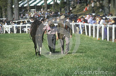 Walker with horse during Spring Steeplechase race Editorial Stock Image