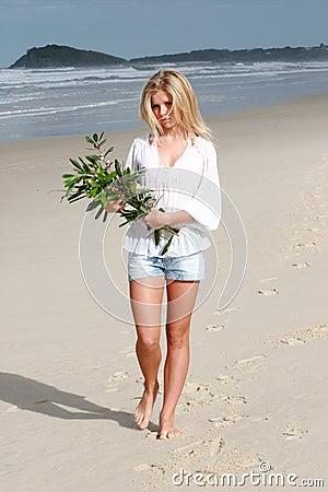 Walking Along Beach Royalty Free Stock Photo Image 164595