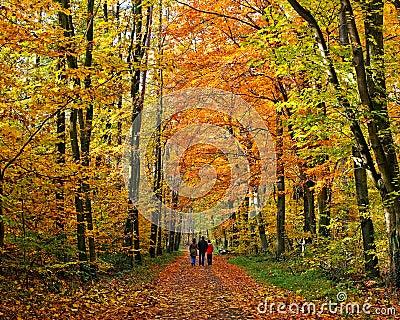 Walking through autumn park