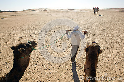Walking Berber