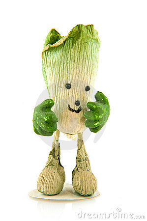 Walking cabbage
