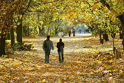 Walking couple in the park in autumn