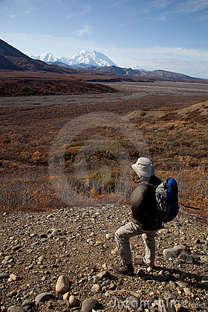 Walking in Denali
