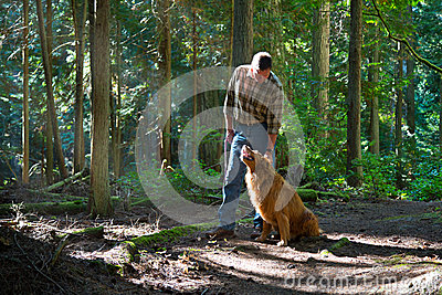 Walking the dog in the woods