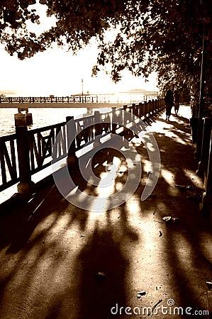 Walking down shadows lane