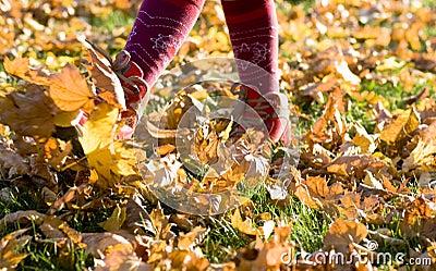 Walking through  fall leaves