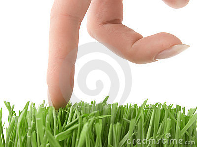 Walking fingers on grass