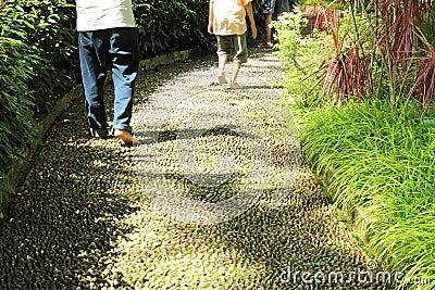 Walking on Foot Reflexology Path