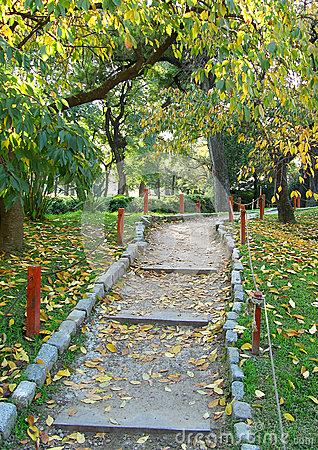 Walking footpath in an autumn Japanese garden