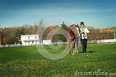 Walking horse in meadow