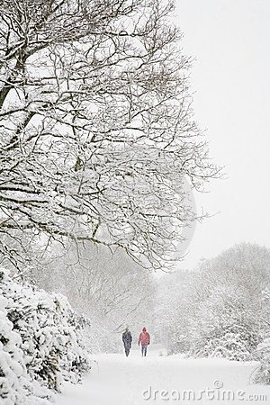 Free Walking In Winter Royalty Free Stock Photo - 6251115