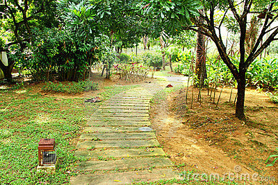 Walking Path in Garden