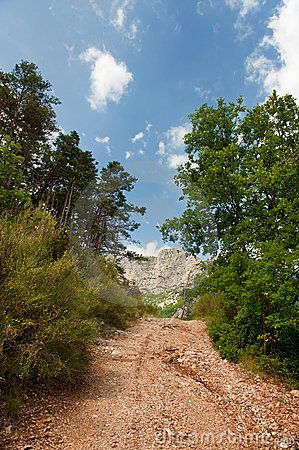 Walking path in the Haute Provence