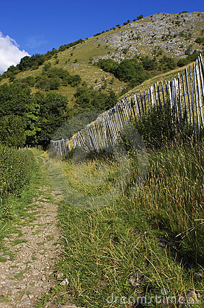 Walking path lined by picket fence in the English peak district
