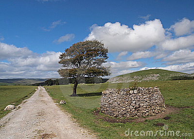 Walking path on the Yorkshire Dales