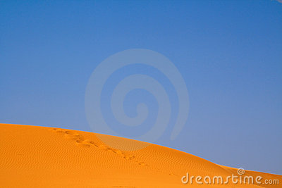 Walking on Sahara