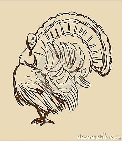 Walking Thanksgiving Turkey