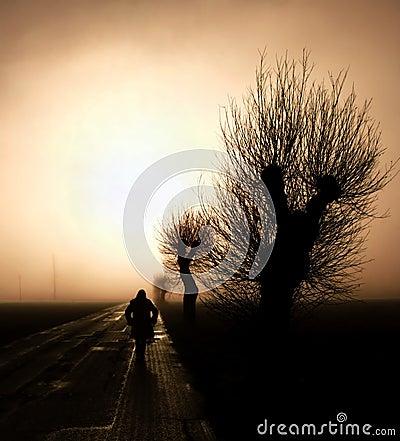 Free Walking Towards The Mist Stock Photos - 4689783