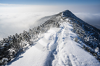 Walking in winter mountains