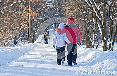 Walking through winter park