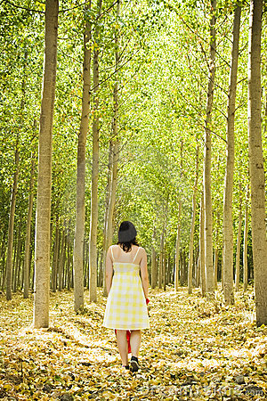 Walking on woods