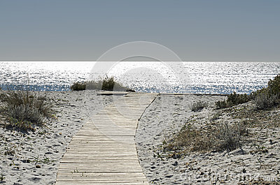 Walkway on the sand