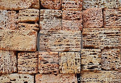 Wall of coquina