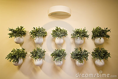 Wall flowers decoration