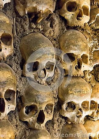 Free Wall Full Of Skulls And Bones Royalty Free Stock Photography - 30935657