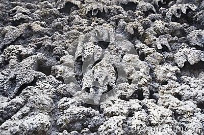 Wall of stalactites