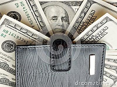 Wallet on heap of money