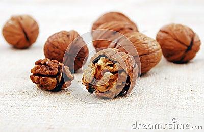 Wallnuts close-up