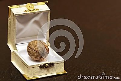 Walnut in a case