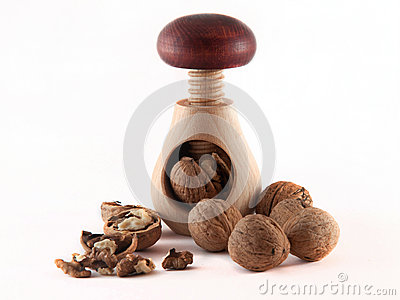 Walnut inserted into nutcracker