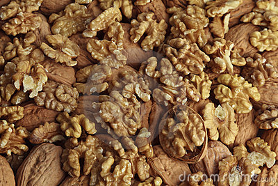 Walnut kernel.