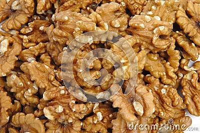 Walnut texture