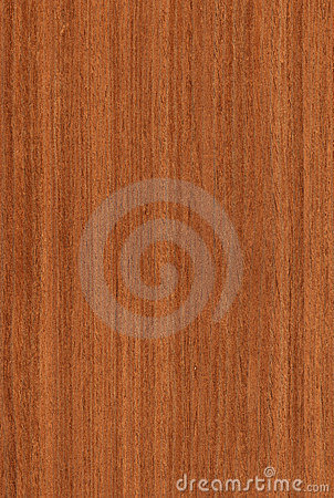 Free Walnut (wood Texture) Stock Photo - 8110690