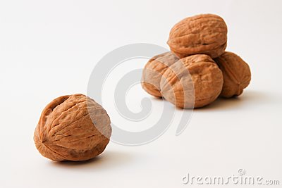 Walnuts Stock Photos - Image: 14310043