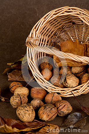 Walnuts Basket - 04