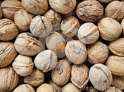 Walnuts in shell background